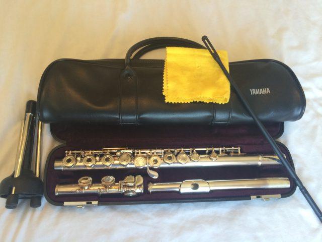 Yamaha Flute Ad Price
