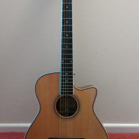 Freshman Electro Acoustic 6 string guitar and hard case