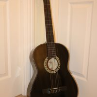 Black Skylark acoustic guitar