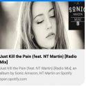 Radio Mix - just kill the pain